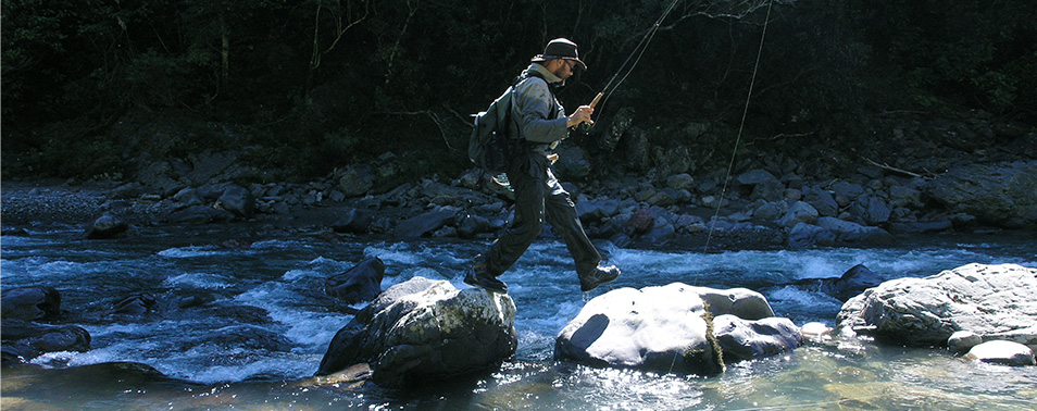 Fly fisherman holding fishing rood, seen from the side, stepping from rock to large rock in a river