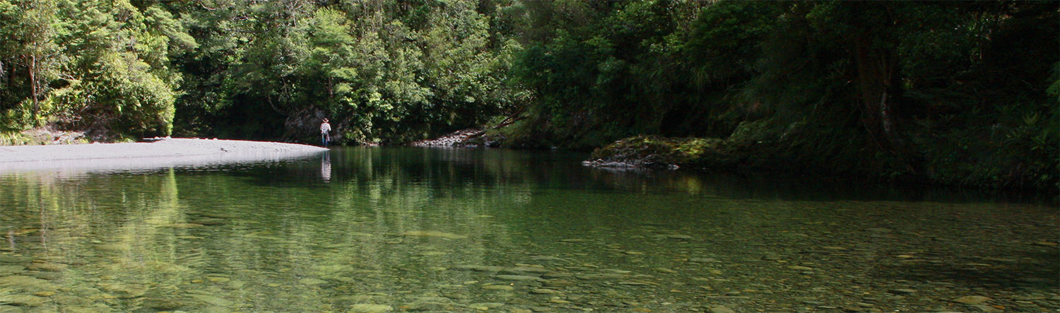 Fly fisherman casting in a calm shallow backcountry pool