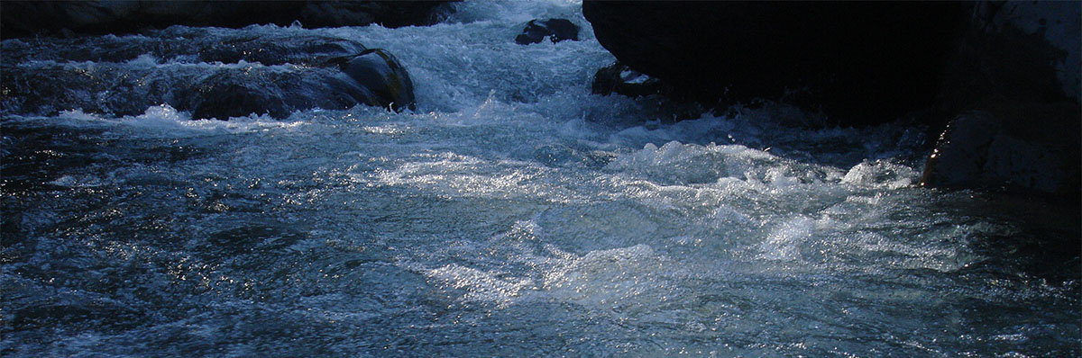 churning, frothing water gushing between rocks in river that trout need to swim up to spawn