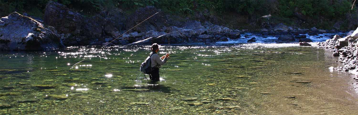 Fly fisherman casting line in a backcountry river, New Zealand