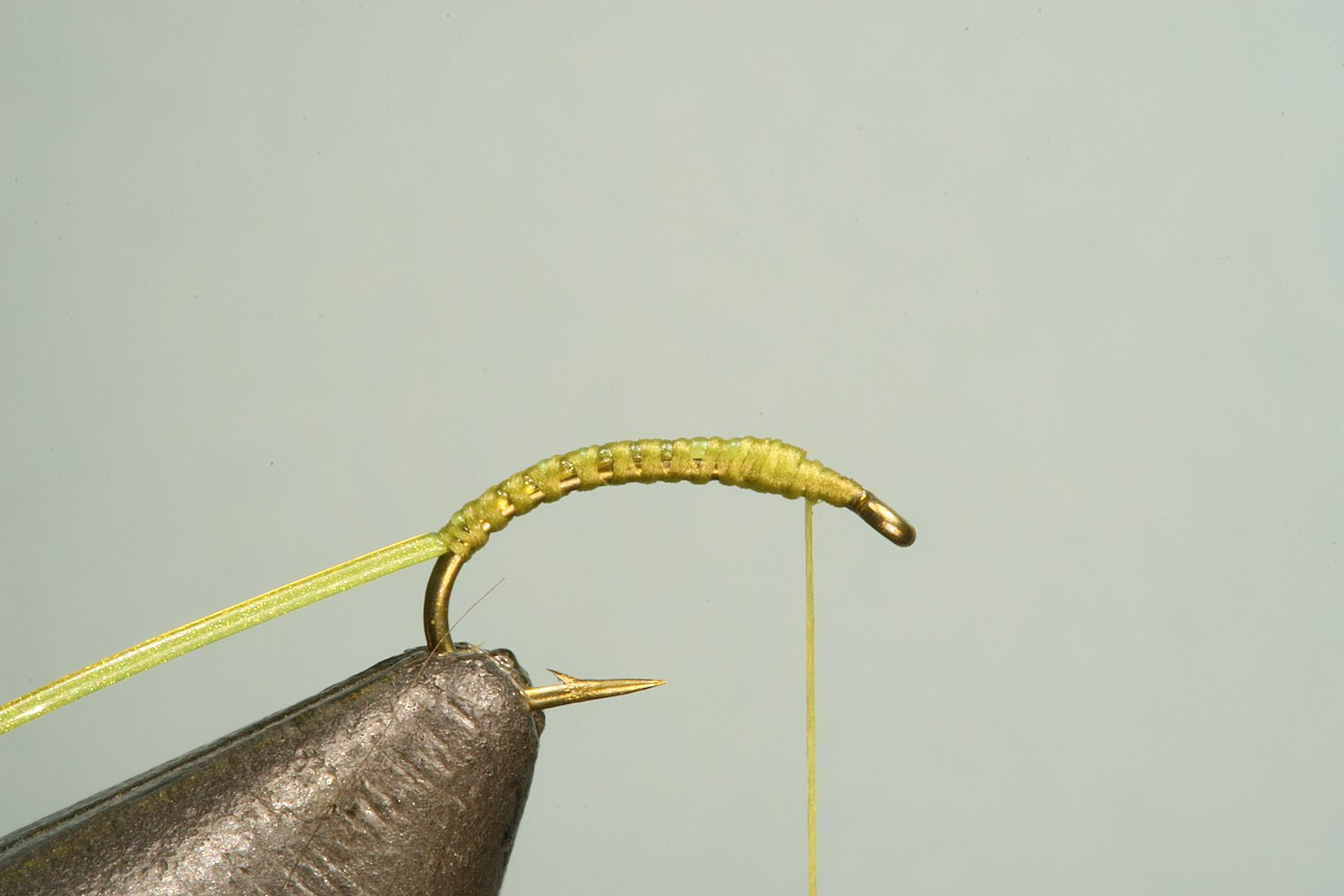 Step 1 of tying sequence for jelly bloodworm fly pattern