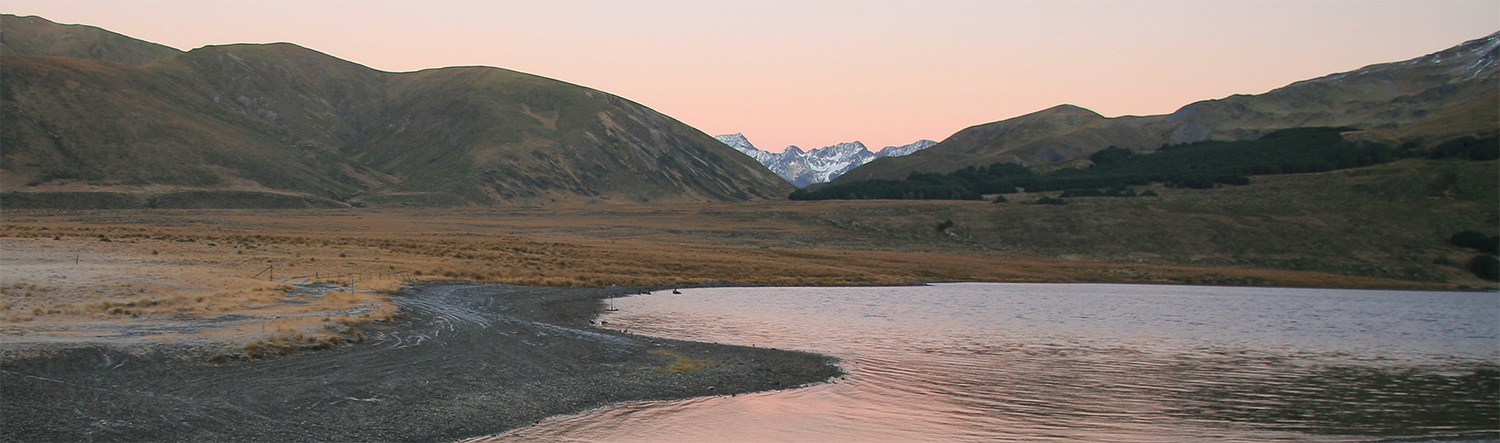 Lake Heron on a clear day at dusk. Pinkish silvery sky  reflecting on lake outlet, with flat tussock surrounds, and snow clad Southern alps in far distance seen between dark mountains