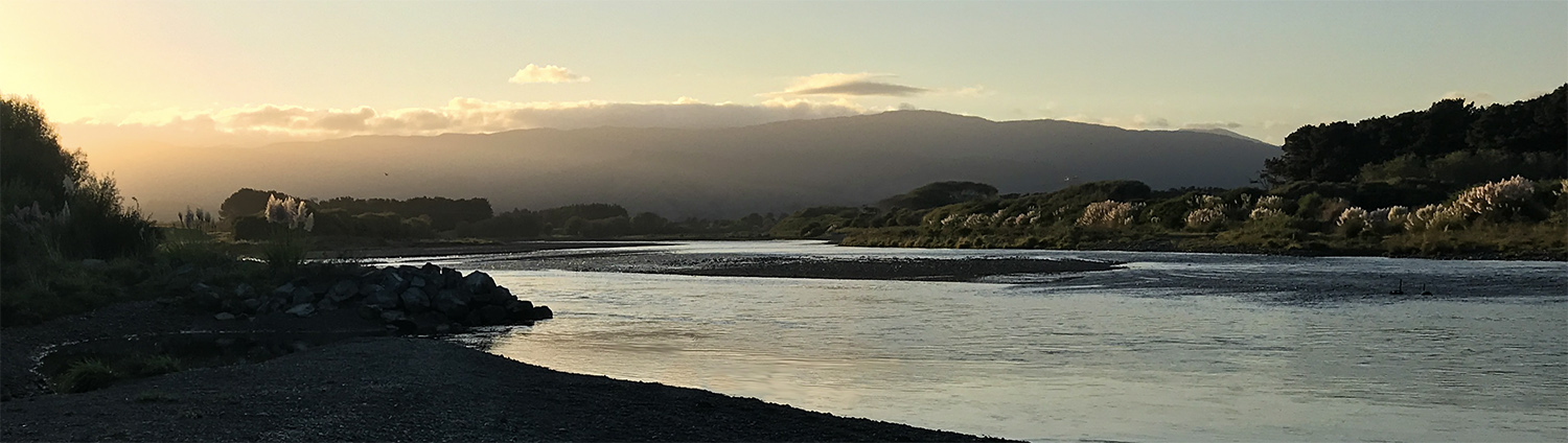 Spey casting on a North Island lowland river