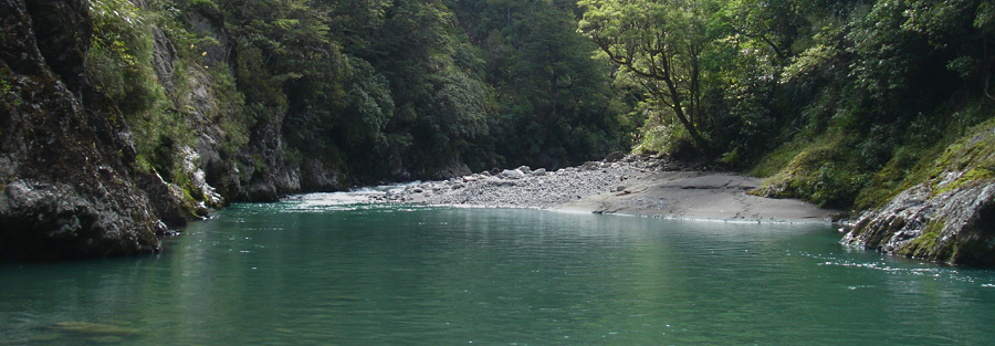 Tranquil pool on backcountry river, New Zealand
