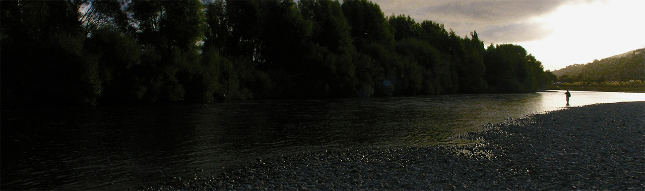 Fly fisherman at dusk with high bank of trees on right